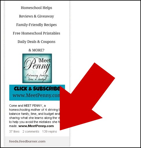 Building a Pinterest campaign to gain email subscribers for your business