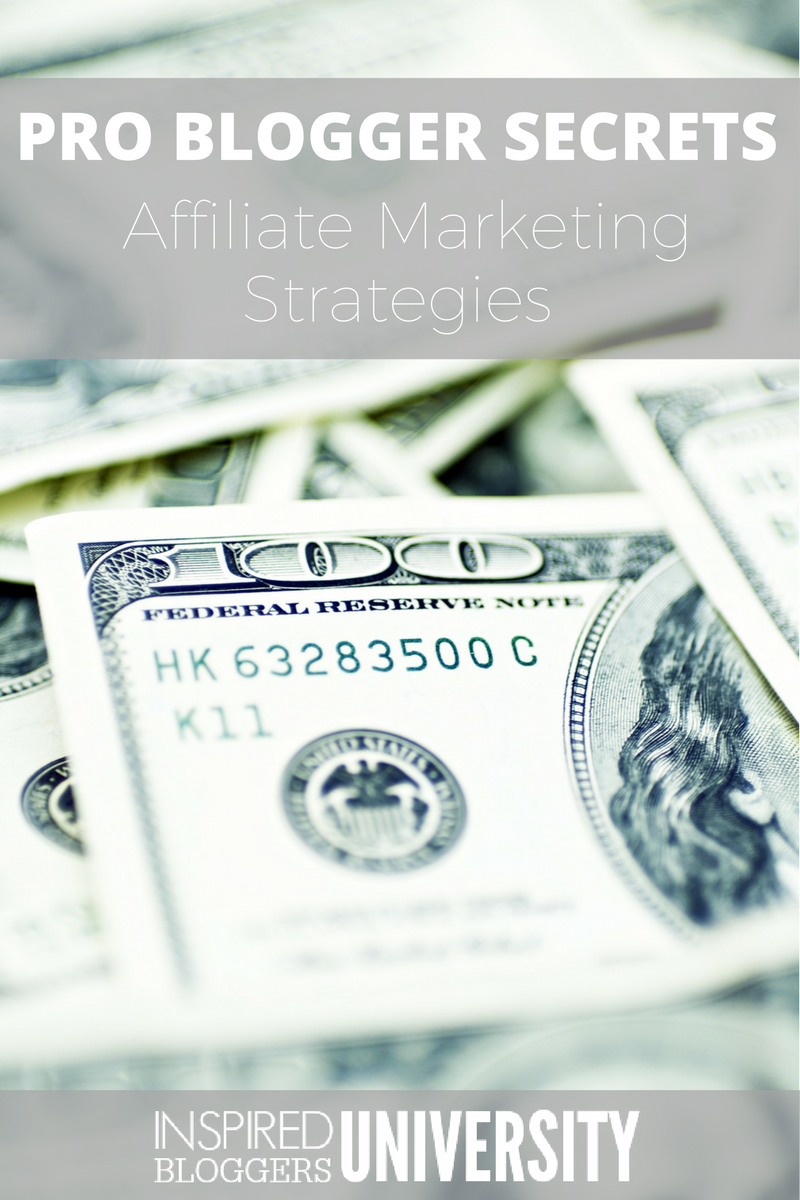 "Have you ever looked at blogger income reports and wondered, ""How do they make that kind of money?"" Now, these pro bloggers are sharing their affiliate marketing strategies to help you grow your profits."
